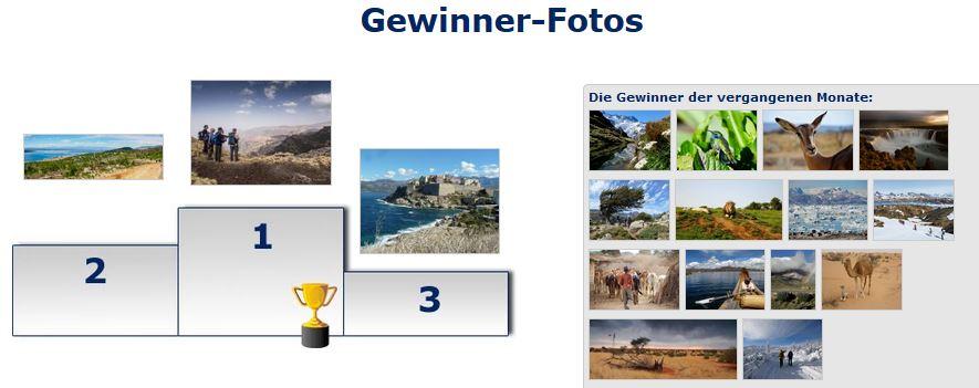 Gewinner_März-Wikinger