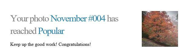 November 005