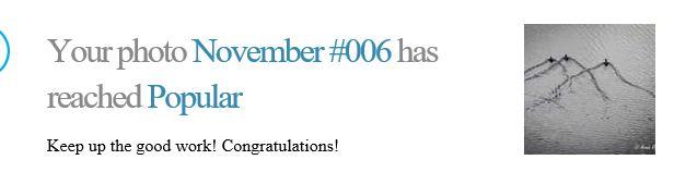 November 009
